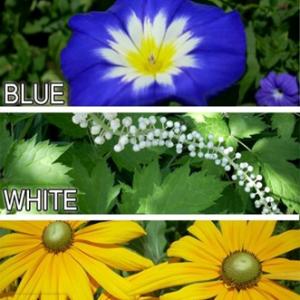 Facebook Flowers
